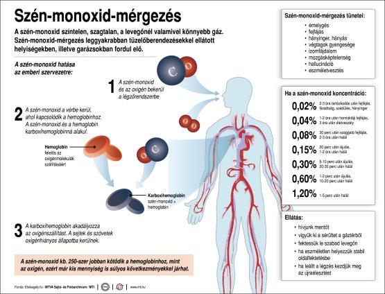 Mi történik a szervezettel szén-monoxid mérgezéskor?