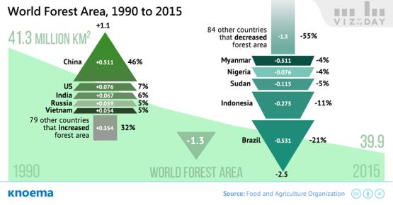 Nem bírunk leállni az erdőirtásokkal