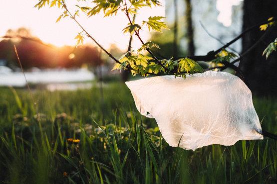 Mégsem tesz jót a környezettel, ha műanyag helyett vászonszatyrot használ