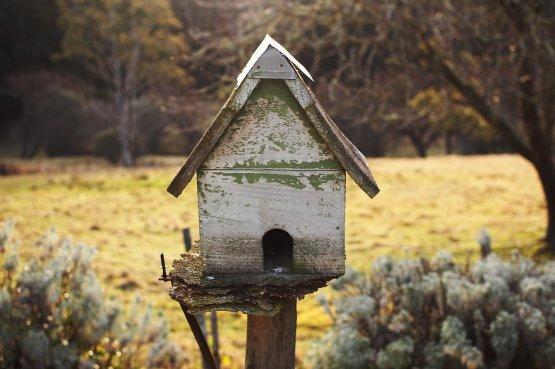 Felmelegítheti az otthonát, ha túl sok szigetelést használ?