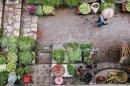 A kertészkedés több, mint egy hobbi – így kezdjen neki saját zöldségek nevelésének!