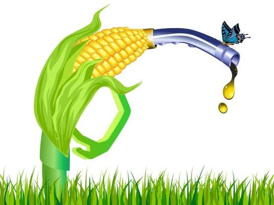 Átláthatóbbá válik a bioüzemanyagok eredete
